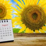 8月の婚活デート企画法