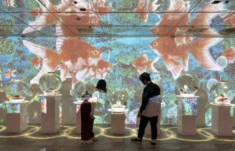 奈良金魚ミュージアム