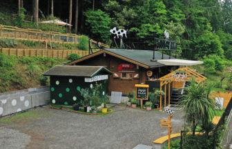 pignic farm&café